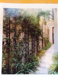 Trellis-covered garden path.