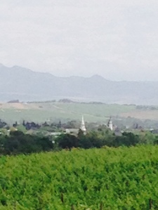 Spires in the small town of Wellington, viewed across vineyards.
