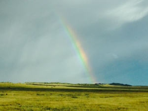 Storm over the Free State.