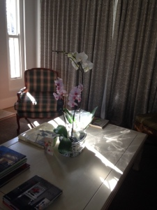 Showered with orchids.