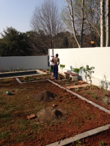 Laying out the flower beds in the front (north) garden.