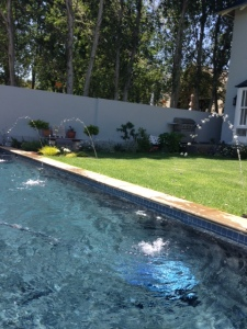A view of our pool from the south east corner of the garden.